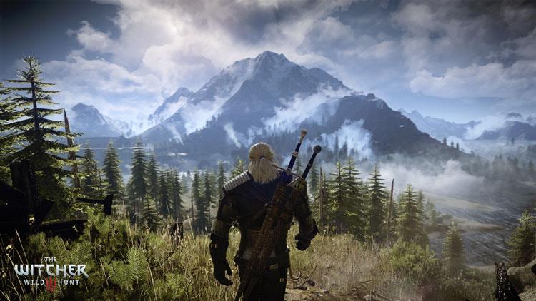 Écran extrait du jeu The Witcher 3